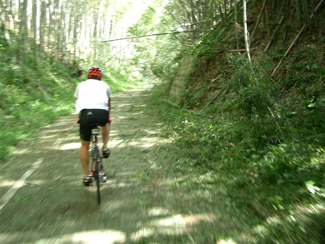 cycleroad2.jpg