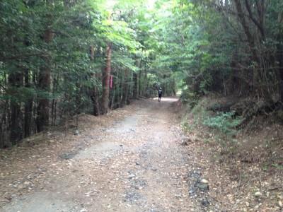 kirishima8