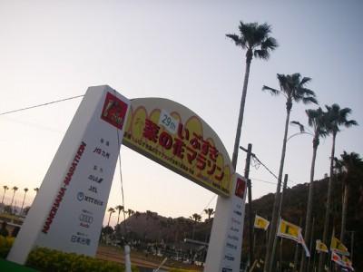 nanohana20102