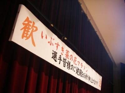 nanohana20104