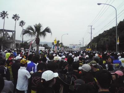 nanohana20107
