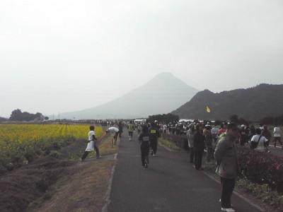 nanohana20108