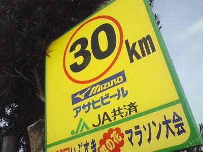 nanohana20109
